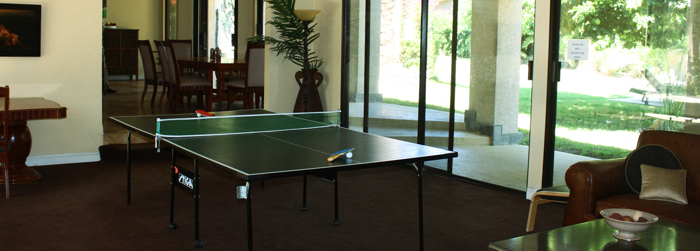 axis east ping pong table